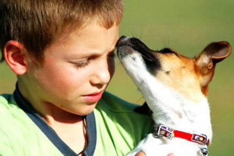 Kids 'n' Dogs - entspannt im Alltag